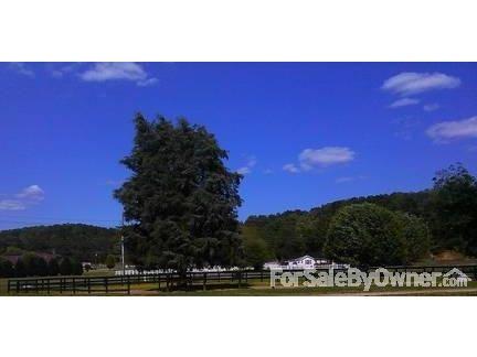 1426 Blair Farm Rd., Odenville, AL 35120 Photo 6
