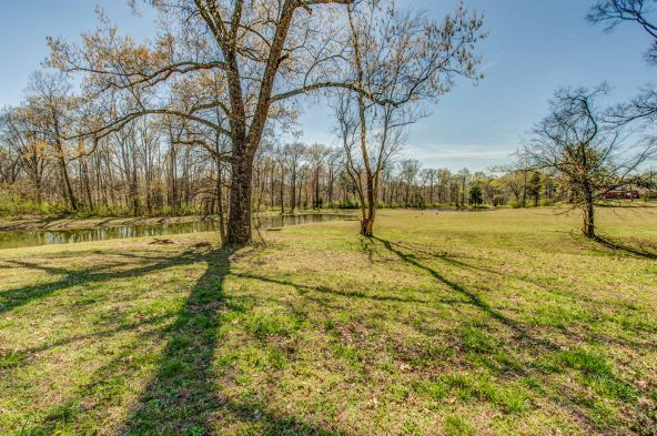 211 River Walk Trail, New Market, AL 35761 Photo 31