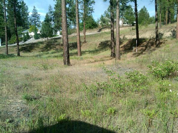 1269 Ruffed Grouse Way, Kettle Falls, WA 99141 Photo 21