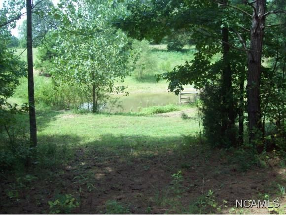 477 Co Rd. 1731, Holly Pond, AL 35083 Photo 21
