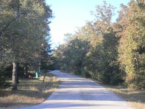 21 Walla Walla Dr., Cherokee Village, AR 72529 Photo 4