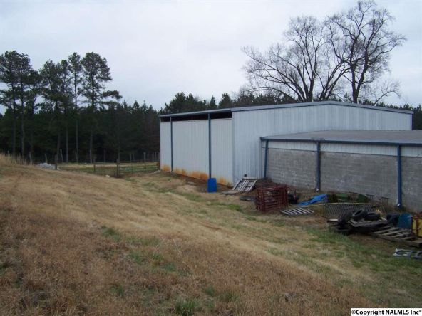 398 County Rd. 23, Mount Hope, AL 35643 Photo 9