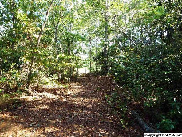 1654 County Rd. 641, Mentone, AL 35984 Photo 37