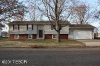 Home for sale: 605 Prairie View, Salem, IL 62881
