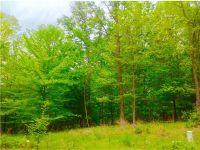 Home for sale: 325 Pine Hills Dr., Nashville, IN 47448