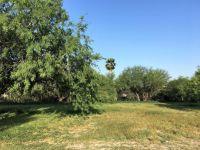 Home for sale: 509 N. Kika de la Garza Blvd., La Joya, TX 78560