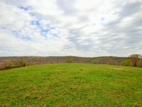 Home for sale: 0 Elk Creek Rd., Cumberland City, TN 37050