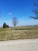 Home for sale: 1123 Whitetail Ln., Sandwich, IL 60548