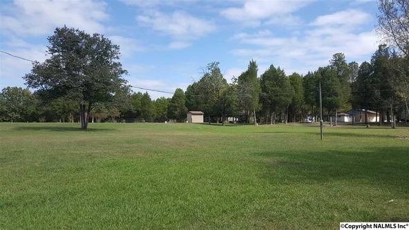 2510 Hwy. 411, Leesburg, AL 35983 Photo 4