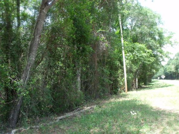 17311 County Rd. 9, Summerdale, AL 36580 Photo 22