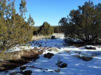 Home for sale: 8417 Lone Pine Pl., White Mountain Lake, AZ 85912