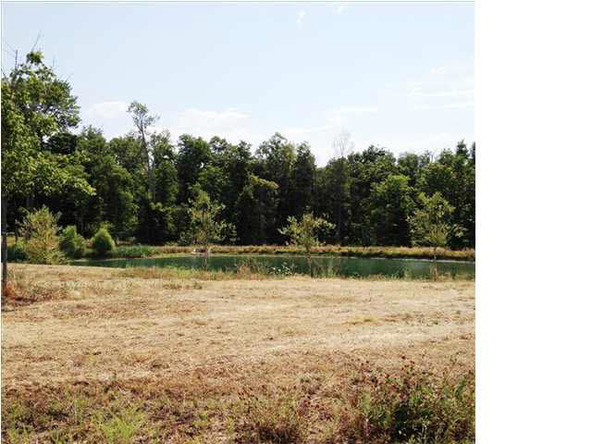 5980 Serenity Dr. Lot 5, Mount Vernon, IN 47620 Photo 28