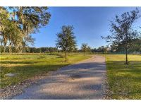 Home for sale: 3604 Little Stearns Rd., Valrico, FL 33596