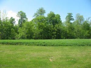 Lt8 Danmar Acres, Whitelaw, WI 54247 Photo 1