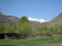 Home for sale: 9557 Challis Creek Rd., Challis, ID 83226