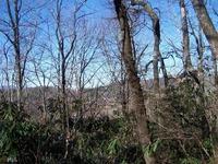 Home for sale: 0 Flint Knob Part 1, Sky Valley, GA 30537