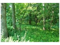 Home for sale: 02 Steel Creek Rd., Brevard, NC 28712