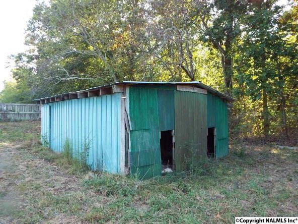 1654 County Rd. 641, Mentone, AL 35984 Photo 25