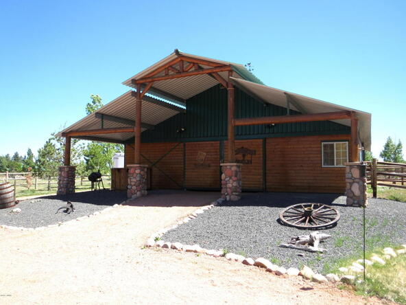 2295 Bison Ranch Trail, Overgaard, AZ 85933 Photo 19