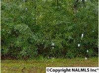 Home for sale: 15 Willmon Cir., Scottsboro, AL 35769