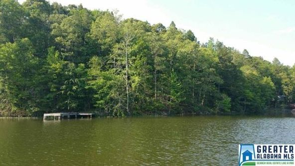 245 E. Lake Hill Dr., Talladega, AL 35160 Photo 1