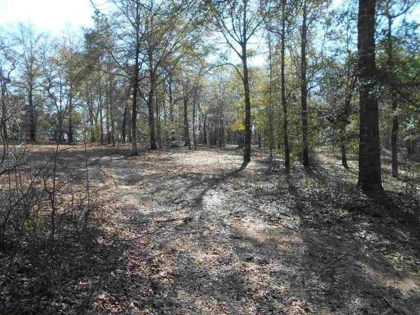 16.9 Acres Private Rd. 1363, Ariton, AL 36311 Photo 11