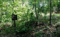 Home for sale: L 105 Overlook Brasstown, Brasstown, NC 28902