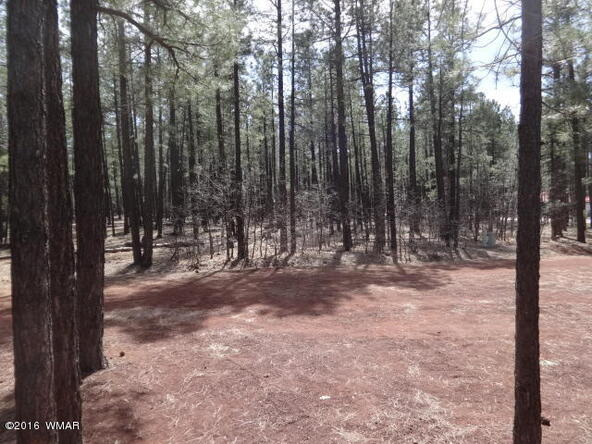 6126 Buck Springs Rd., Pinetop, AZ 85935 Photo 143