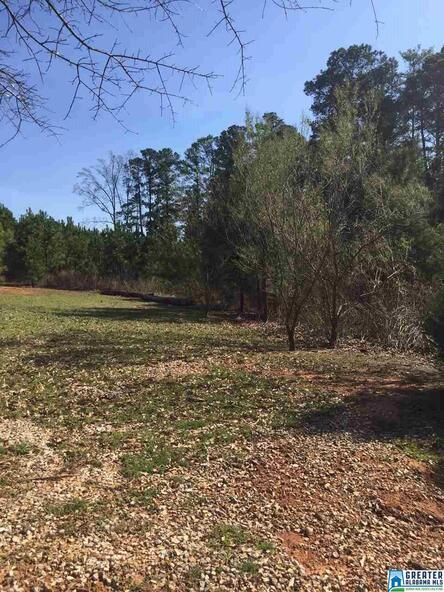 7 Grand Way, Talladega, AL 35160 Photo 5