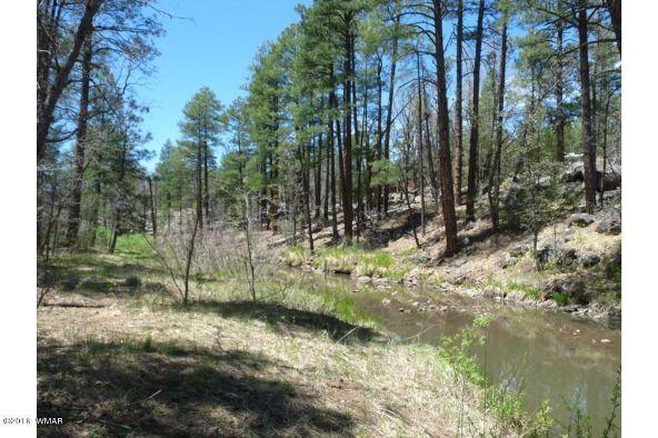 920 W. Billy Creek Dr., Lakeside, AZ 85929 Photo 40