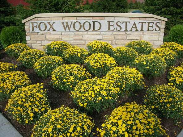 1132 Fox Wood Ln., Downers Grove, IL 60516 Photo 3