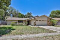 Home for sale: 507 Sandy Creek Dr., Brandon, FL 33511