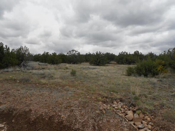 4650 W. Dillon Wash Rd., Prescott, AZ 86305 Photo 7