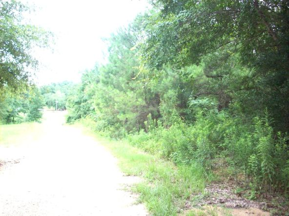 100 Rabbit Run, Atmore, AL 36502 Photo 4