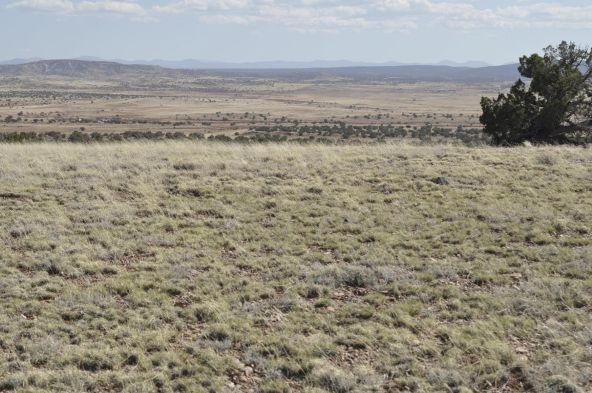 297 Woodridge Ranch, Concho, AZ 85924 Photo 27