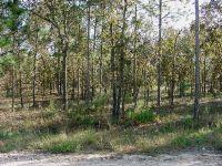 Home for sale: Tbd N.E. 6th St., Williston, FL 32696