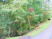 Home for sale: Lot 4 St. Of Dreams Rd., Gatlinburg, TN 37738
