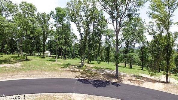 162 Ridgehaven, Hot Springs, AR 71913 Photo 17