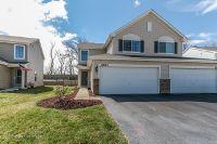 Home for sale: 2623 Hearthstone Dr., Hampshire, IL 60140