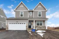 Home for sale: 13617 Palmetto Dr., Plainfield, IL 60544