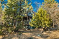 Home for sale: 1512 Wolf Rd., Big Bear Lake, CA 92315