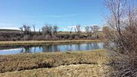Home for sale: Tbd County Rd. 76, Parlin, CO 81239