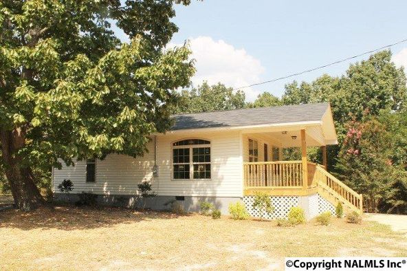 461 County Rd. 1001, Valley Head, AL 35989 Photo 4