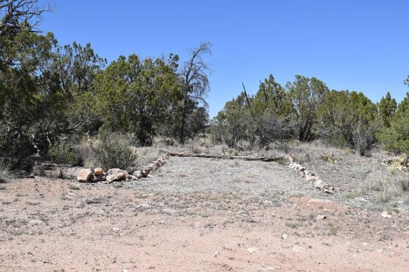487 Sierra Verde Ranch, Seligman, AZ 86337 Photo 24
