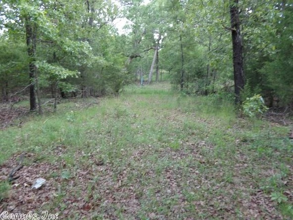 2606 Eagle Nest Rd., Ash Flat, AR 72513 Photo 25