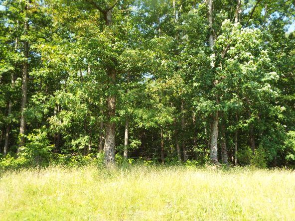 565 Cat Hollow Rd., Elk Horn, KY 42733 Photo 5