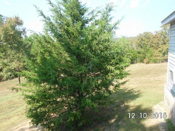 222 County Rd. 3226, Clarksville, AR 72830 Photo 24
