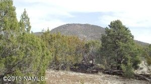 10705 N. Falcon Ridge, Williams, AZ 86046 Photo 1