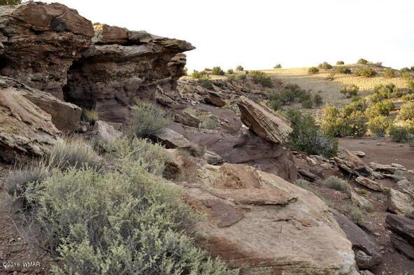297 Woodridge Ranch, Concho, AZ 85924 Photo 17