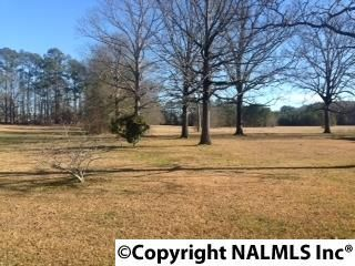 3787 Smith Rd., Southside, AL 35907 Photo 5